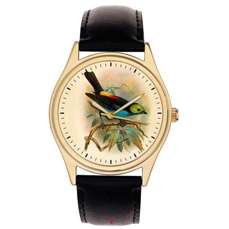 Stunning Ornithology Wrist Watch, Calliste Paradisa, Ornithologist Bird Watcher