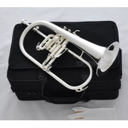 Flugelhorn Horn Monel Valves Case Professional Silver Plated