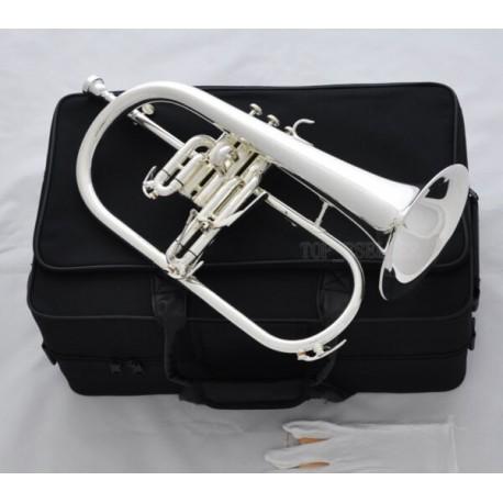Flugelhorn Horn Monel Valves Case Professional Silver Plated