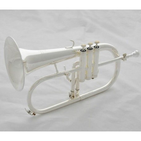 Bb Flugelhorn Monel Valve Professional Silver plated brand horn with case