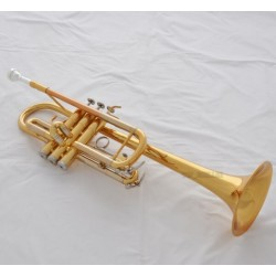 Electrophoresis gold Trumpet New C Key Horn Monel Valves With Case