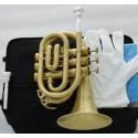 Bb Pocket Trumpet Brushed Brass horn Abalone Key 2 mouthpiece With Case