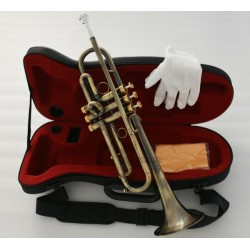 Professional Antique Bronze Trumpet horn Bb Keys With Monel valve Hard Case