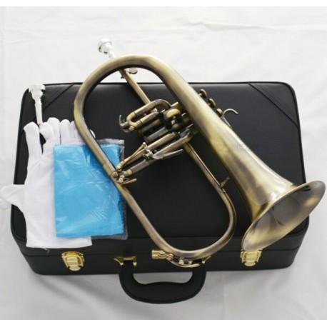 Professionalessionl Antique Flugelhorn Bb Flugel Horn Monel Valve 2Pc Mouth Leather Case