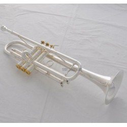 Professional Silver Trumpet Horn Reverse Leadpipe Monel Valve engraving bell