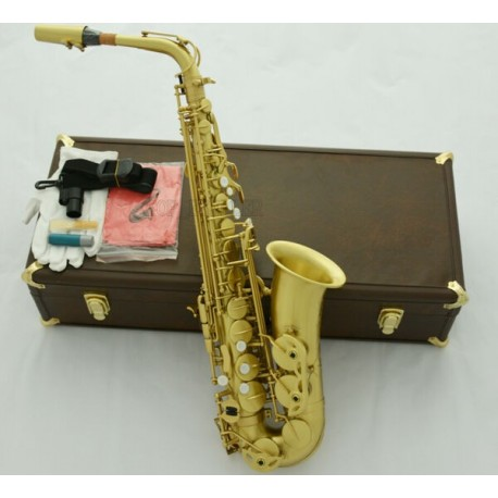 Professional 54 Reference Alto Saxophone Brushed Yellow Brass Sax Leather Case