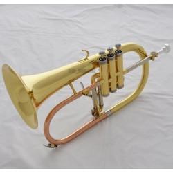 Professional Gold Bb Flugelhorn Horn Monel Valve ABALONE Shell Key With Case