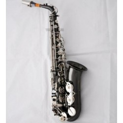 Professional Rolled Note Hole Alto Saxophone Black nickel Silver Sax Case