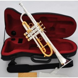 Professional Silver Gold Plated Heavy Trumpet Horn import Monel Valve Case