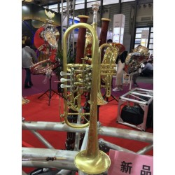 Professional Rotary Valve Trumpet Brushed Brass B-Flat Horn With Case