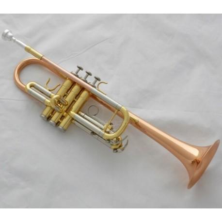 Professional Phosphor Brass C Key Trumpet horn Monel Valves Case