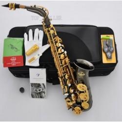 Professional Superbrass 5000 Alto Saxophone Black Nickel Gold Eb Sax Germany Mouth