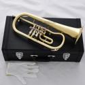 High Grade Rotary Valves Flugelhorn Gold Bb Flugel Horn with case