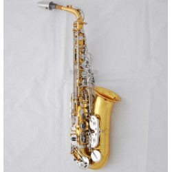 Professional Rolled Tone Hole Alto Saxophone Gold Silver Sax High F# with Case
