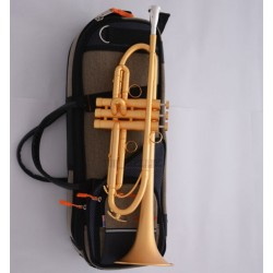 Professional Customized Satin Gold Trumpet horn B-Flat Monel Piston Case