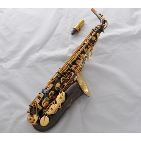 Professional Rolled Note Hole Eb Alto Saxophone Black Nickel gold bell Sax