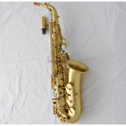 Professional Yellow Antique Alto Saxophone High F# Sax Black Shell Key Case