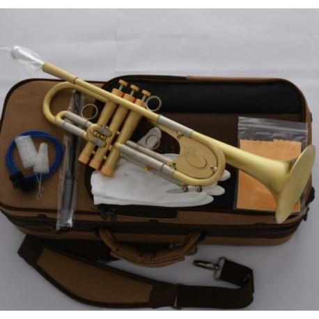 Customized Professional B-Flat Trumpet horn Brushed Brass Great Sound Warranty