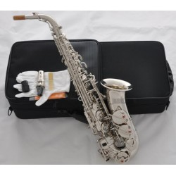 Professional Silver nickel Alto Saxophone Eb sax Black Shell Key High F# with Case