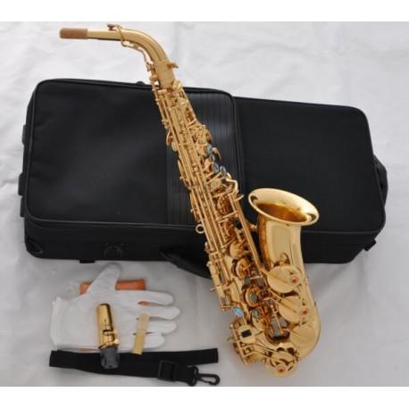 Professional Gold Alto Saxophone Eb Abalone Keys Sax High F# Double Bars, Case