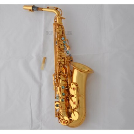 Professional 54 Reference Alto Saxophone Gold Sax High F# with Case