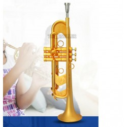 Professional Heavy Trumpet Horn Satin Gold Finish Monel Valve With Case