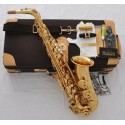 Professional 875 Alto Sax High F# Saxophone with German Mouthpiece, Deluxe Case