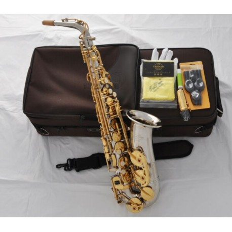 Professional Superbrass Alto Saxophone E-Flat sax Silver Nickel Body Gold Keys