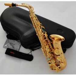 Professional Hand Hammered Alto Saxophone Gold Plated Eb Sax Reversed Neck +Case
