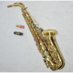 Professional Matt brass 54 Reference Alto sax Saxophone E-Flat Saxofon With Case