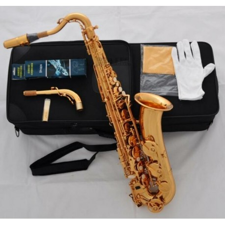 Professional Electrophoresis Gold C Melody Saxophone Sax High F#, 2 Necks