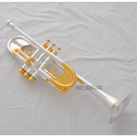 Professional Heavy C Key Trumpet Silver/Gold Customized series Horn Case