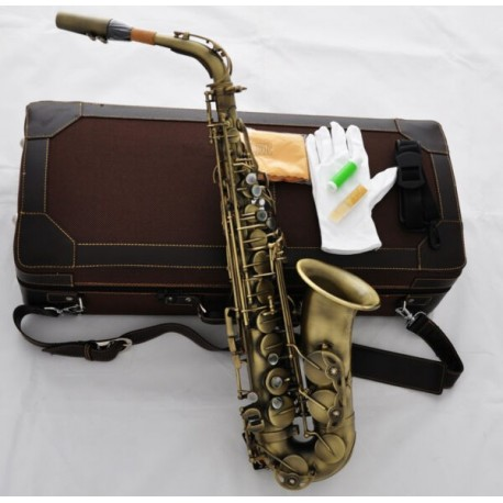 Professional Customized Alto saxophone Antique Bronze Sax Italy pads Case