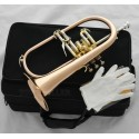 Professional phosphor copper Flugelhorn Flugel Horn Monel Valves, with Case