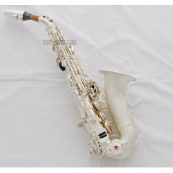 Professional Superbrass Curved Soprano Saxophone Satin Silver Sax Italian pads