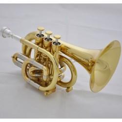 Professional C Key Pocket Trumpet Gold Lacq Cornet Horn Monel Valve Case