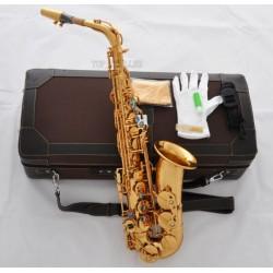 Professional Gold Brass Customized Alto Saxophone E-Flat sax Case
