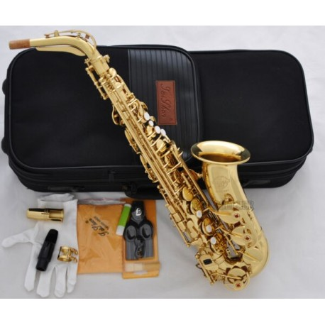 Professional Superbrass 5000 Model Alto Sax Gold Saxophone Germany Mouth With Case