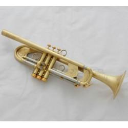 Professional Matt Heavy Trumpet Germany Brass Customized Horn Monel Valve + Case