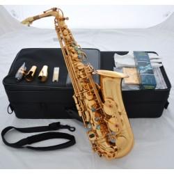 Professional Gold 54 Reference Eb Alto Saxophone Sax + Pro Metal Mouthpiece