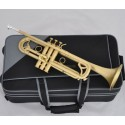 TOP Brushed Matt Brass Trumpet Monel Valves Bb Flat Horn With Case