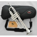 Brand Professional Silver Trumpet Design horn Monel valve with Case