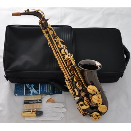 Superbrass Pro Series Alto Saxophone Black Nickel Gold Sax High F# engraving Bell New Case
