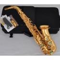 Sale!!! Pro.Gold Alto Saxophone Abalone Shell Key Sax High F# Double Rails New
