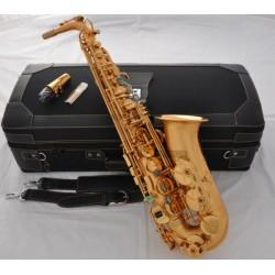 Professional Satin Gold Plated E-Flat Alto Saxophone sax High F# Italian pad