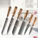 Japanese Aus10 Damascus Kitchen Knife 67 layer Amazing Quality Sapele Wood Handle
