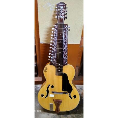 Classic Edition MOHAN VEENA SLIDE GUITAR Chaturangui Configuration w Chikari Strings