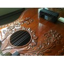 Collectible Carved Chaturangui Style Sitar Fret Neck Design Mohan Veena Slide Guitar. Custom made