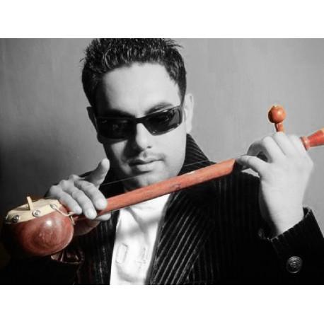"Tumbi / Ektaara Deep ResonantSound High Energy Indian ""Mini Sitar"" Folk instrument"