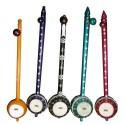"Colorful Tumbi / Ektaara Deep Resonant Sound High Energy Indian ""Mini Sitar"" Folk instrument"